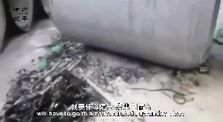"""Man almost starves to death outside Wuhan to avoid """"concentrated quarantine camp"""" by Live Leak Backup"""